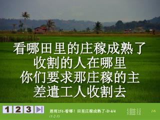 看哪田里的庄稼成熟了 收割的人在哪里 你们要求那庄稼的主 差遣工人收割去