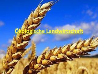 �kologische Landwirtschaft