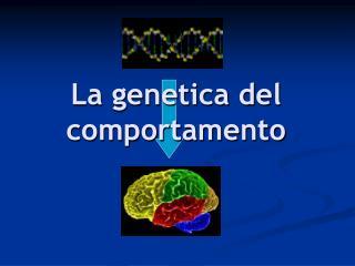 La genetica del comportamento