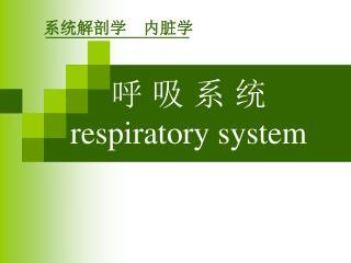 呼 吸 系 统 respiratory system
