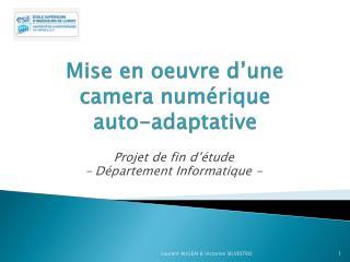 Mise  en oeuvre d'une camera  numérique        auto- adaptative