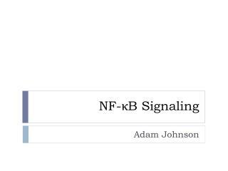 NF- κ B Signaling