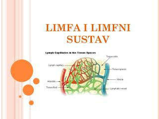 LIMFA I LIMFNI SUSTAV