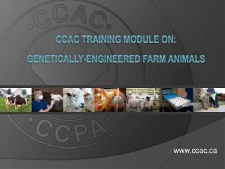 CCAC TRAINING MODULE ON:   GENETICALLY-ENGINEERED FARM ANIMALS