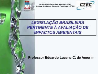 Professor Eduardo Lucena C. de Amorim