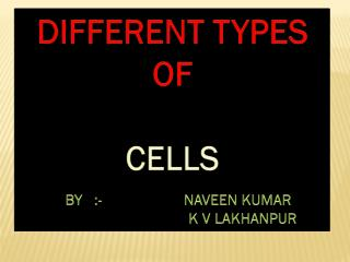DIFFERENT TYPES OF CELLS    BY   :-                      NAVEEN KUMAR K V LAKHANPUR