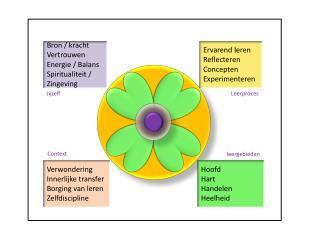 Bron / kracht Vertrouwen Energie / Balans Spiritualiteit / Zingeving