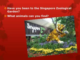 Have you been to the Singapore Zoological Garden?  What animals can you find?