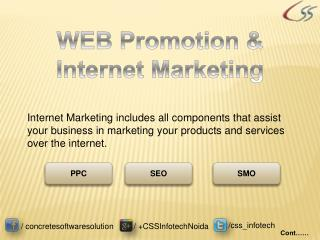 Web Promotion & Internet Marketing by CSS Infotech