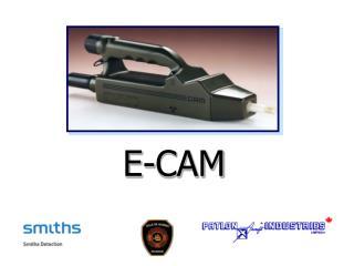 E-CAM
