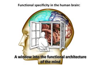 A window into the functional architecture  of the mind