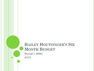 Hailey Houtsinger's Six Month Budget