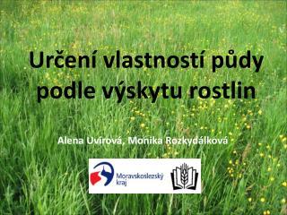 Určení vlastností půdy podle výskytu rostlin