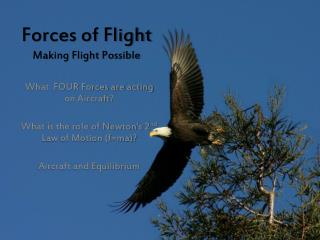 Forces of Flight Making Flight Possible
