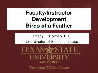 Faculty/Instructor Development  Birds of a Feather