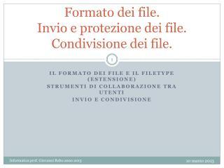 Formato dei  file. Invio e protezione dei file. Condivisione dei file.