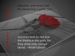 Advance, and never halt, for advancing is perfection.