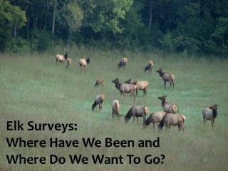 Elk Surveys:  Where Have We Been and  Where Do We Want To Go