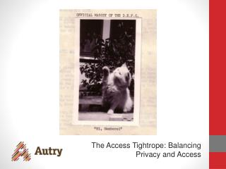 The Access Tightrope: Balancing Privacy and Access