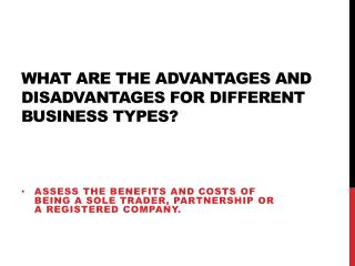 What are the advantages and disadvantages for different business types?