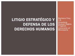 Litigio Estratégico y Defensa de los Derechos Humanos