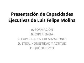 Presentación de Capacidades Ejecutivas de Luis Felipe Molina