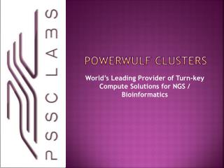 POWERWULF CLUSTERS