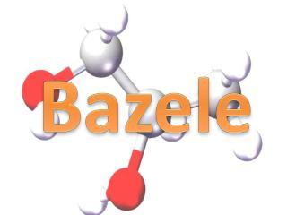 Bazele