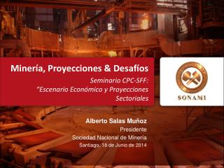 Alberto Salas Muñoz Presidente Sociedad Nacional de  Minería Santiago, 18 de Junio de 2014