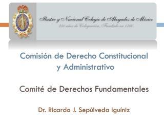 Reformas constitucionales: Derechos Humanos AMPARO