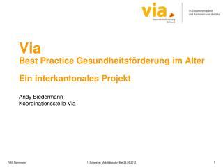 Via Best Practice  Gesundheitsförderung im  Alter Ein interkantonales Projekt