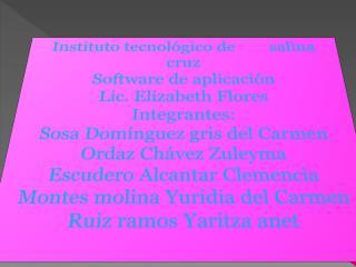Instituto tecnol�gico de        salina cruz Software de aplicaci�n Lic. Elizabeth Flores