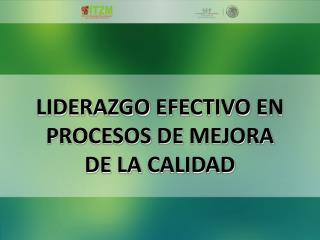 LIDERAZGO  EFECTIVO  EN PROCESOS DE  MEJORA DE LA  CALIDAD