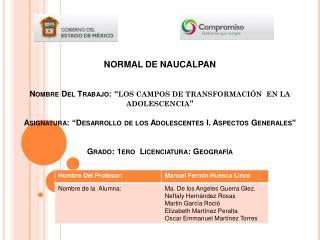 LOS CAMPOS DE TRANSFORMACIÓN  EN LA ADOLESCENCIA