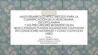 Equipo: Aguilar Magaña Diana Canto Rodríguez  Yuseline Pérez Muñoz Sharon