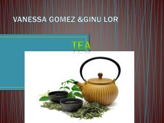 VANESSA GOMEZ &GINU LOR