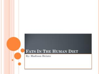 Fats In The Human Diet