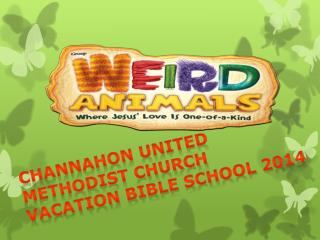 CHANNAHON UNITED METHODIST CHURCH VACATION BIBLE SCHOOL 2014