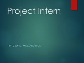 Project Intern