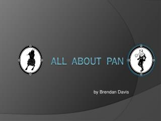 All  about  pan