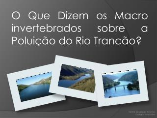 O Que Dizem os Macro invertebrados sobre a Poluição do Rio Trancão?