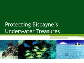 Protecting Biscayne's Underwater Treasures