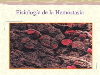 Fisiología de la Hemostasia