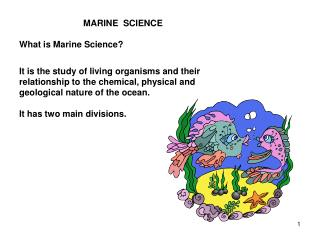 MARINE  SCIENCE What is Marine Science?