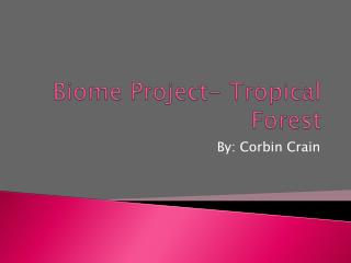 Biome Project- Tropical Forest