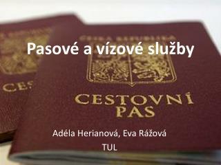 Pasové a vízové služby