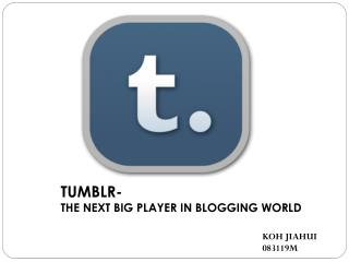 TUMBLR- THE NEXT BIG PLAYER IN BLOGGING WORLD