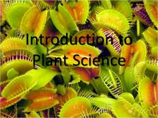 Planting  Maintenance of Ornamental Plants