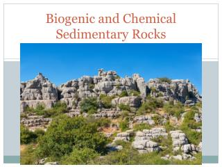Biogenic and Chemical Sedimentary Rocks