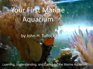Your First Marine Aquarium  by John H.  Tullock